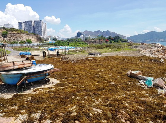 Khánh Hòa thu hồi dự án lấn biển để xây dựng Trung tâm biểu diễn nghệ thuật