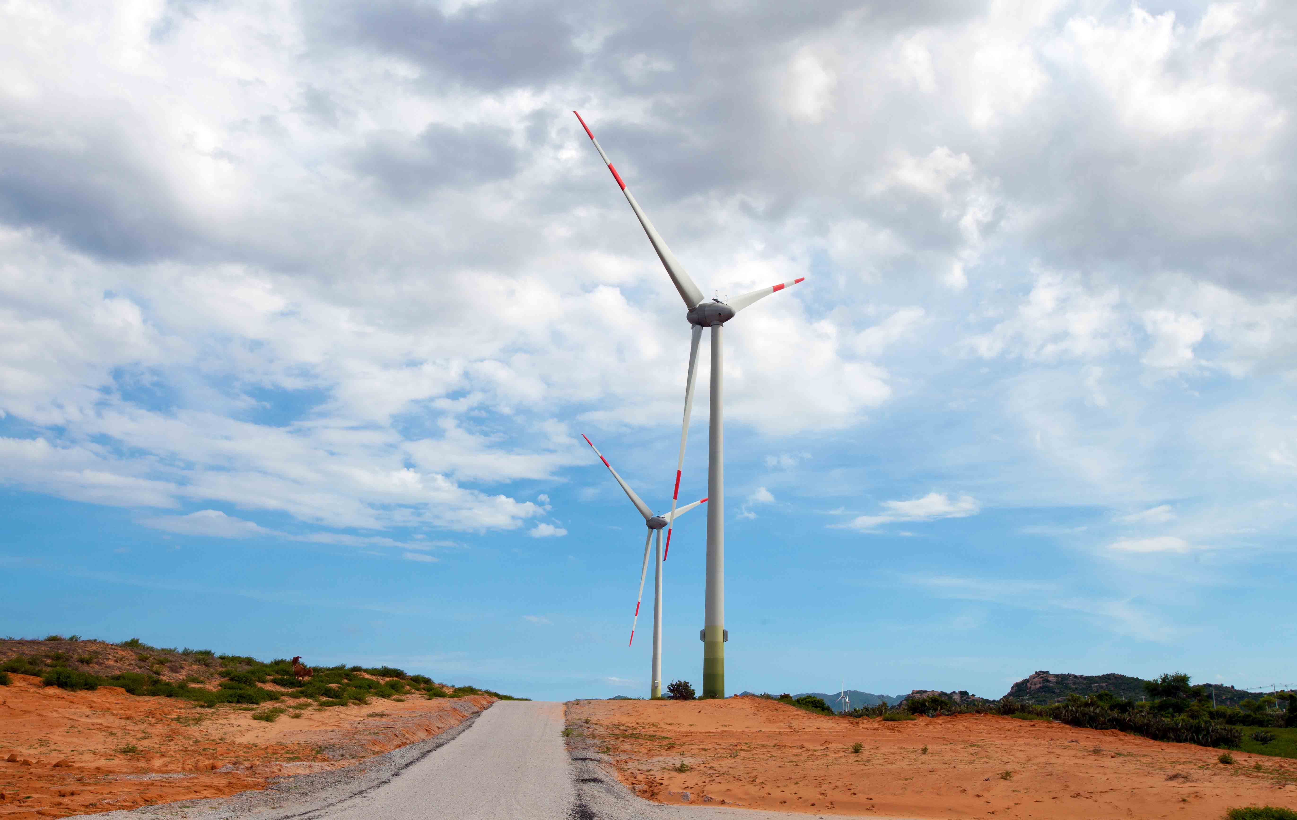 Cánh đồng quạt gió Mũi Dinh nằm giữa sa mạc cát rộng lớn nên càng nổi bật những trụ phong điện với ba cánh quạt khổng lồ, cao 85m, nặng gần 200 tấn giữa bốn bề thoáng rộng và mênh mông biển xanh, cát trắng.