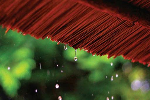 Vẫn còn mưa giọt gianh