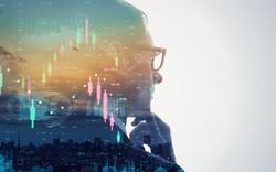 Cổ phiếu bất động sản lớn chìm trong sắc đỏ, nhiều mã vốn hóa nhỏ vẫn bứt phá
